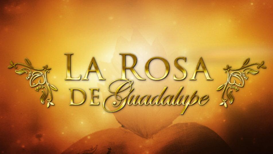 Watch la rosa de guadalupe online at hulu