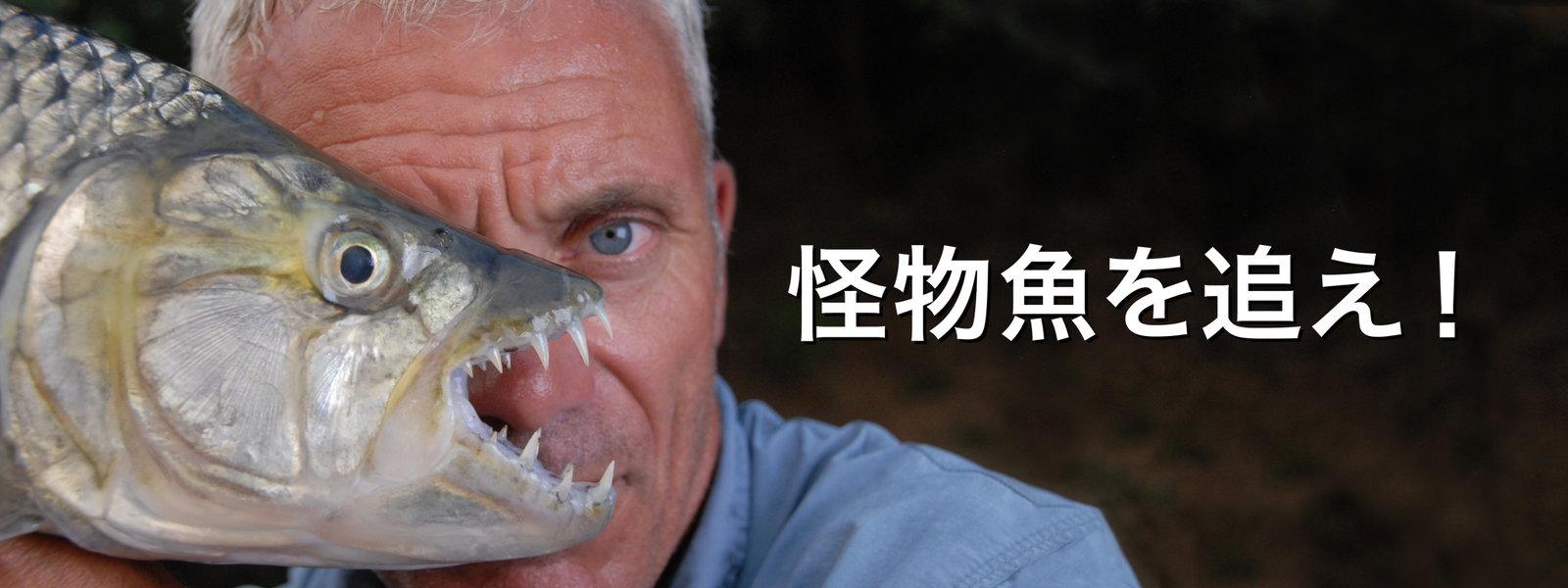 怪物魚を追え! 動画